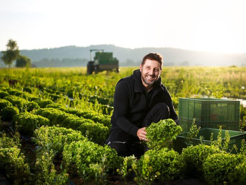 Image Aufnahme eines Bio Bauern Landwirt mit mit frischem biologisch angebautem Salat bei der Arbeit im Feld | Fotograf in der Region Osnabrück Münster Bielefeld für Imagefotografie