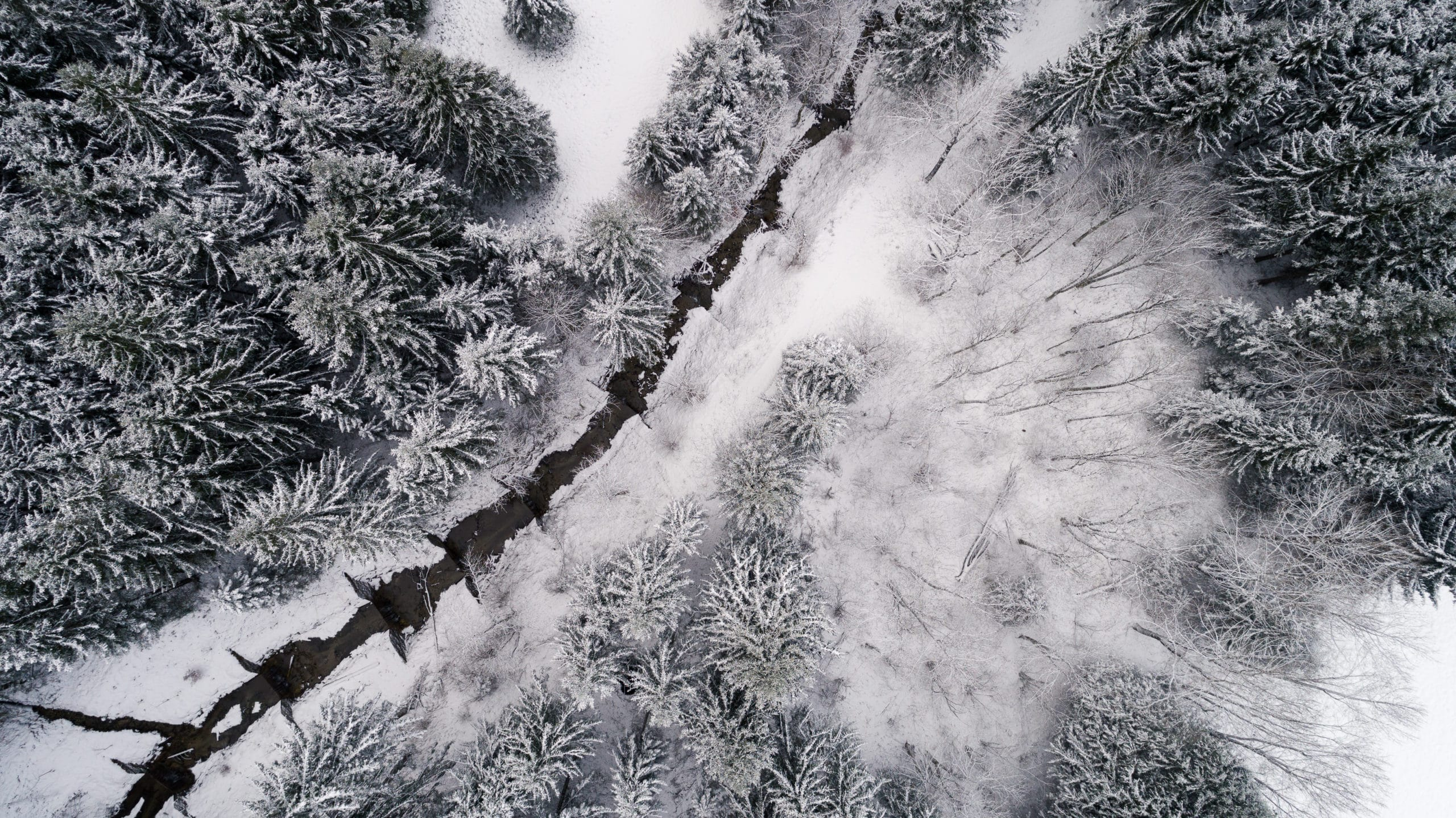 Drohnenfotografie einer eingefrorenen Landschaft im Allgäu | Werbefotograf für atemberaubende Luftaufnahmen in Osnabrück Münster Bielefeld NRW Niedersachsen und bundesweit