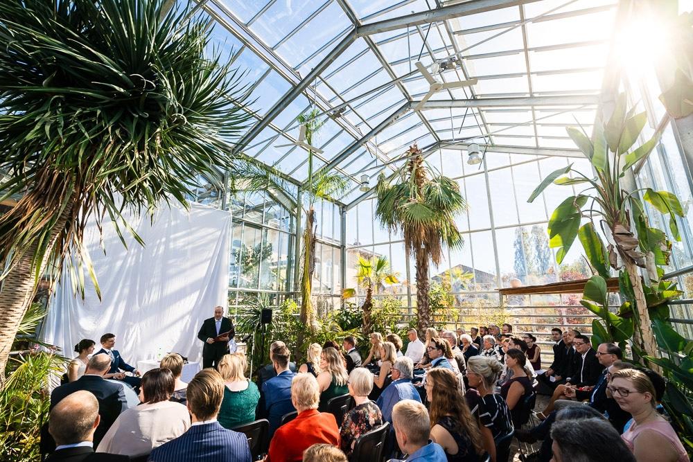Hochzeit unter Palmen